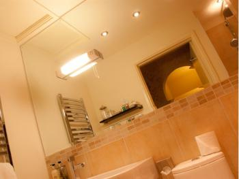 Elizabeth Manor Room Bathroom