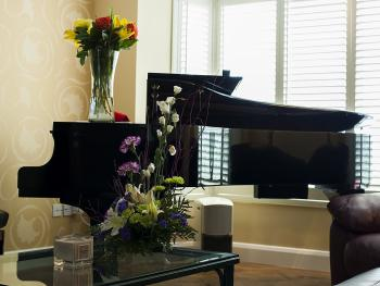 Piano. Feel free to play!