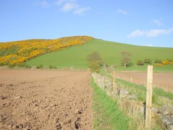 Tarbet Hill, West Kilbride