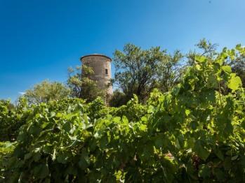 La tour du guet