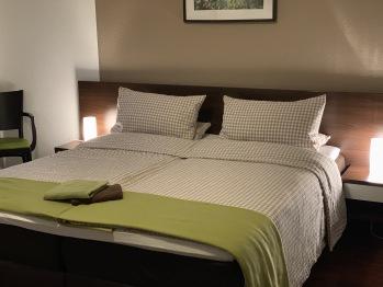 Doppelzimmer-Komfort-barrierefreies Badezimmer-Gartenblick