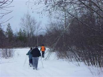 On site cross country ski and snow shoe trails in the winter months. You'll need to bring your own equipment.