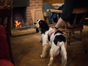 A proper fire, dogs and muddy boots welcome