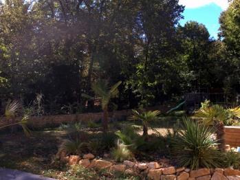 Jardin avec son massif tropical