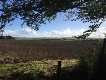 50 acre field