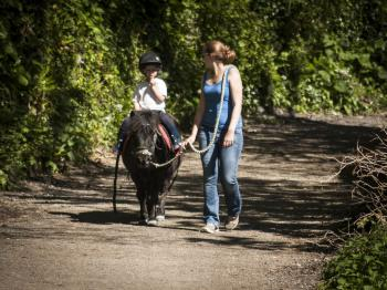 Horse riding and other activities available locally.