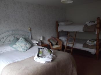 Quad room-Standard-Ensuite with Shower-bunk beds - Dog Friendly