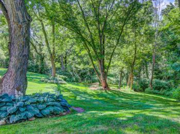 Side yard grounds view