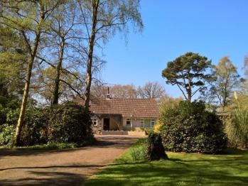 Birchcroft - hideaway - Birchcroft - drive and front garden