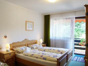 Doppelzimmer-Eigenes Badezimmer-mit Dusche-Balkon - Basistarif