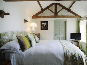 Junior Suite-Ensuite-Lavender Cottage - Junior Suite-Ensuite-Lavender Cottage