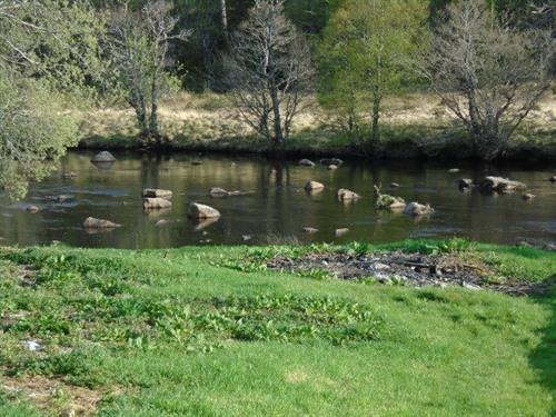 Black Water River at bottom of Garden