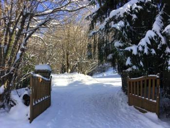 LaZenitude.com & Saunas est situé en bordure de forêt. Le calme est maître.