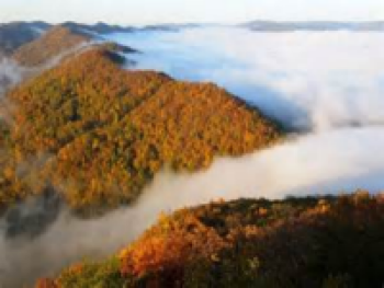 Cumberland Gap National Park is a sea of color in the fall (October & November usually)
