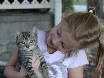 … holding a kitten