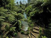 The Lost Gardens of Heligan - 8.5 Miles (13.6 Km)