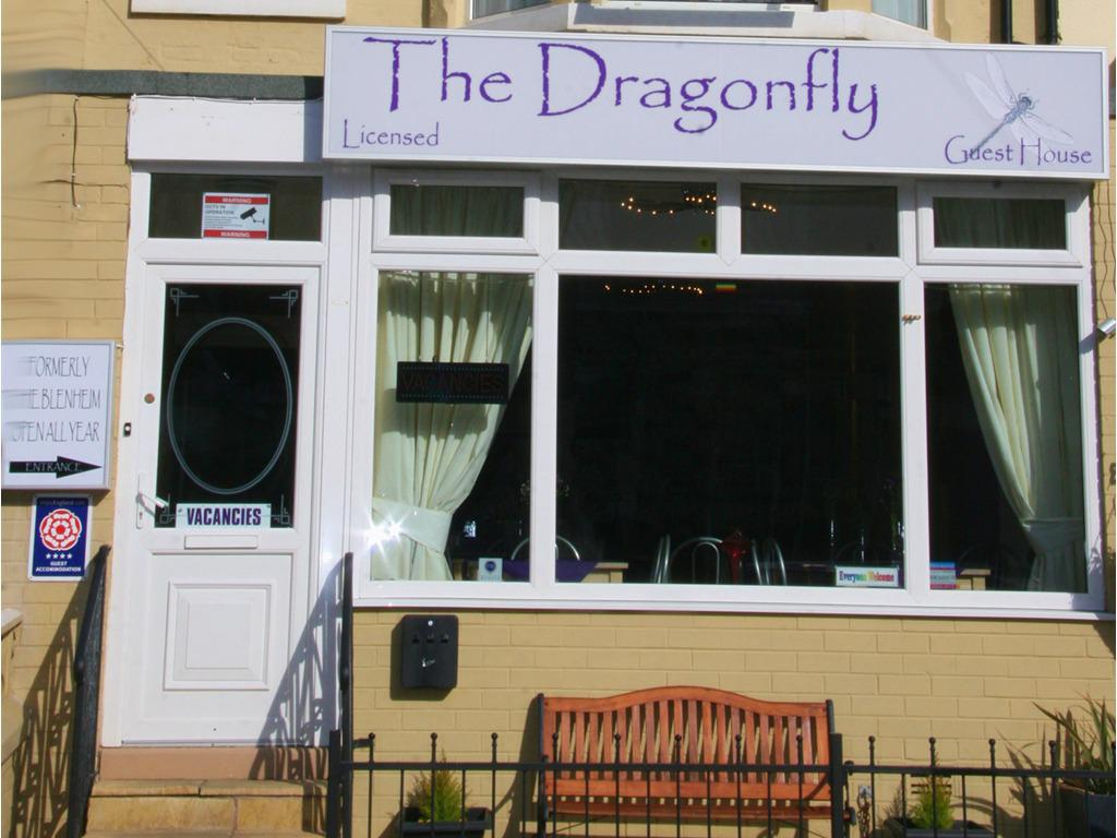 Welcome to The Dragonfly