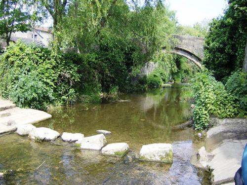 The stepping stones cross the River Brue running through the middle of Bruton.