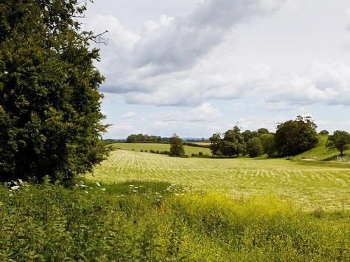 Beautiful Sussex countryside surrounds the Blacksmiths Arms