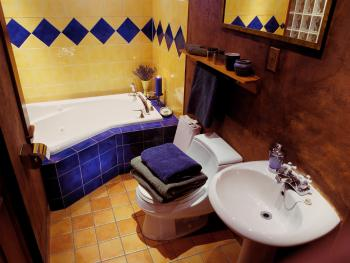 Private en-suite bathroom in Mother Nature Room