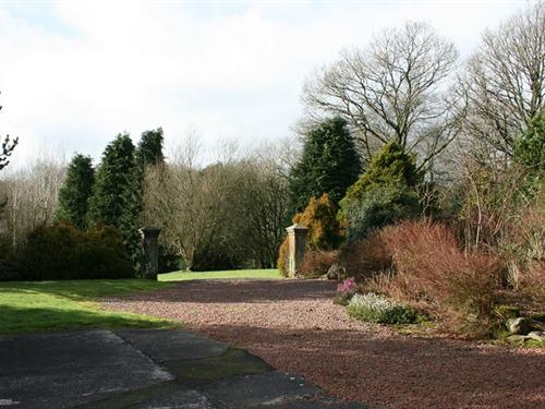 Our lovely grounds