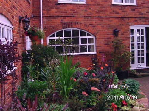 Attractive Courtyard garden