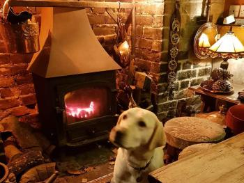 Our dog friendly bar is very popular and you can dine in this area as well as Snug and Garden rooms