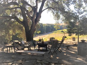 Fire pit and area for relaxing under the oaks with fantastic vineyard views.