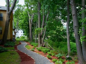 The back of the inn garden and walkway
