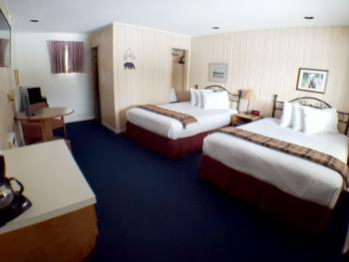 Quad room-Ensuite-Standard