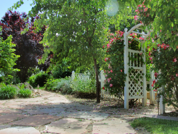 Pinot Noir's beautiful pathways and patios to enjoy the countryside