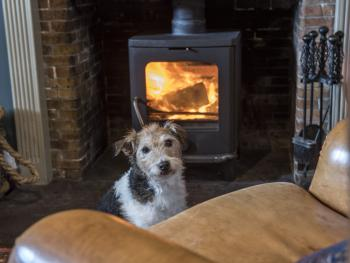 Black Bull Hotel - Dog Friendly