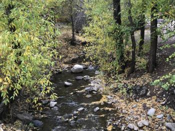 Pine Creek runs through the middle of the resort, Cabins 1-3 and 6 are next to the creek where you can open a window and fall asleep to its soothing sounds