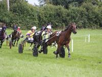 Ballabuidhe Horse Races & Fair