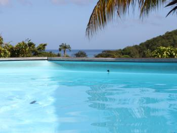 "Bungalow ""Martinique"" piscine privative"