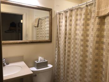 Premium Queen Room - Bathroom