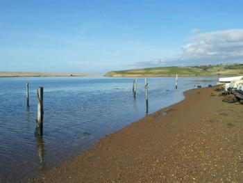The Fleet Lagoon, our brackish beach just 300 metres from the farm
