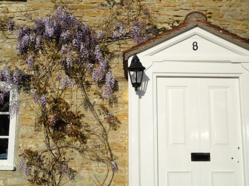 Front Door and Wisteria