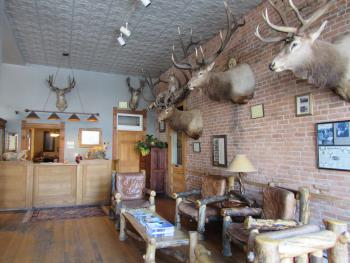 When you first enter the Meeker Hotel you are greeted by trophy mounts on display in our lobby.