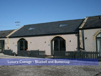 Cottage-Luxury-Private Bathroom-Bluebell and Buttercup