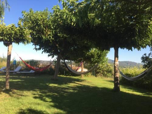 hamacs dans le jardin