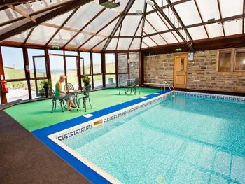 Small swimming pool & sauna