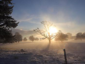 Parkland in snow