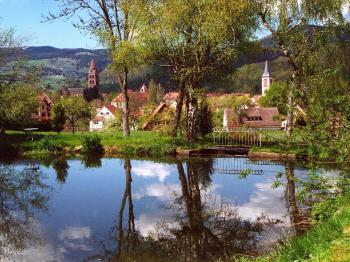 Maison bellevue - Munster and our private pond