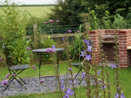 Garden and BBQ for Shepherds Hut