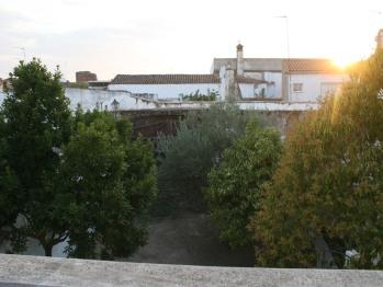 Vista del corral/patio ajardinado.