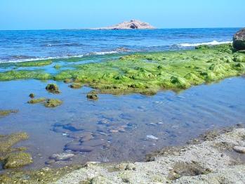 playa de Lancón