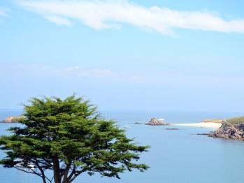Plage des Sept-îles au détour du sentier côtier