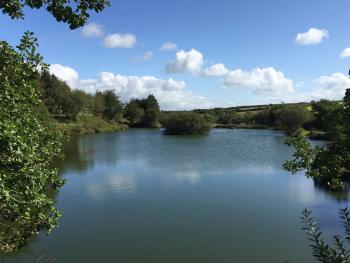On our 34 acre estate we have 5 well stocked fishing lakes which are a haven for wildlife