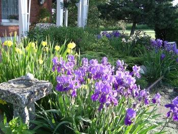 Garden at Green Woods